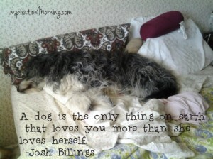 A dog is the only thing on earth  that loves you more than she loves herself.  ~Josh Billings